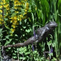 Leaping Frog Sculpture in Bronze, piped for water feature