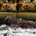 Icelandic 12 skin sheepskin rug , hand dyed