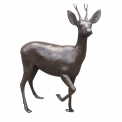 Roe Deer Buck Bronze sculpture