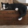 lazy black n white cat Resin