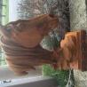 Cast Iron horse head finials in rusty finish